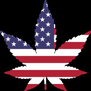 Cambios en las leyes de Marihuana