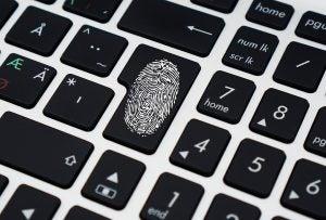 fallas de seguridad de información personal en el 2019